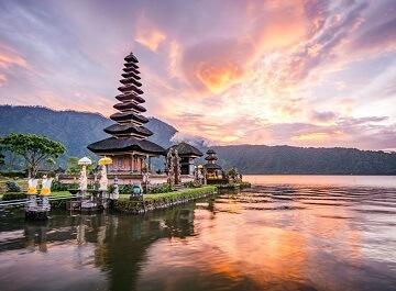 درباره بالی