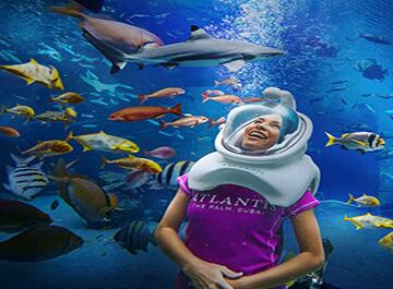 آکواریوم دبی ( dubai aquarium )
